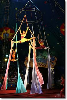 Circussmirkus